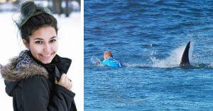 Muž udrel žraloka päť krát do tváre po tom, ako napadol jeho 17 ročnú dcéru