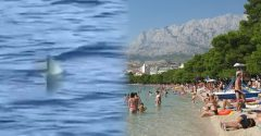 Pri pobreží Makarskej riviéry v Chorvátsku natočili turisti nebezpečného žraloka